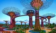 Việt Nam là thị trường khách du lịch tiềm năng của Singapore Ve may bay đi Singapore