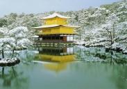 Khuyến mãi Hà Nội - Tokyo khứ hồi: 450 USD Vé máy bay khuyến mãi Hà Nội đi Nhật